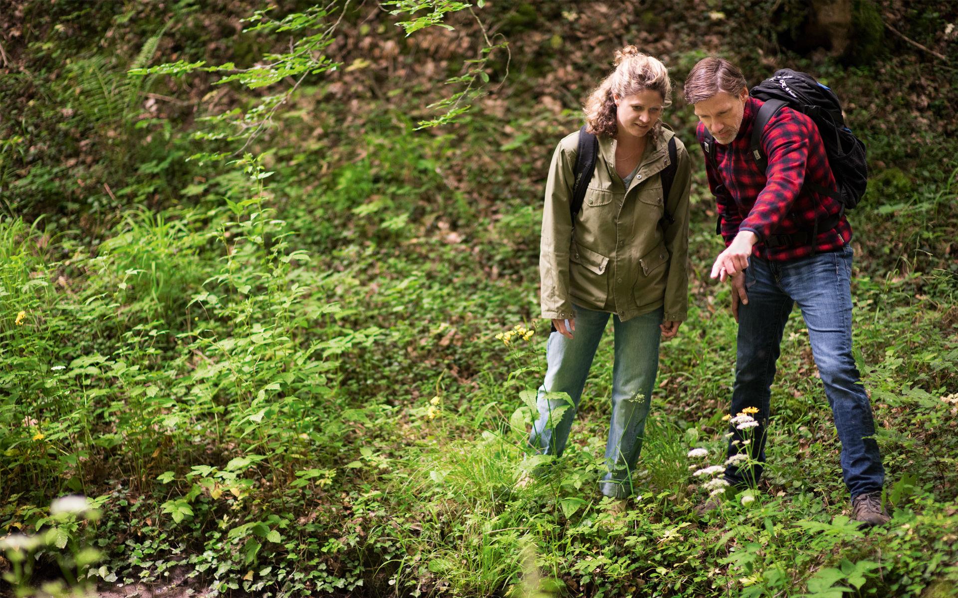 Foto zweier Wanderer im Kaskadental in Bad Kissingen