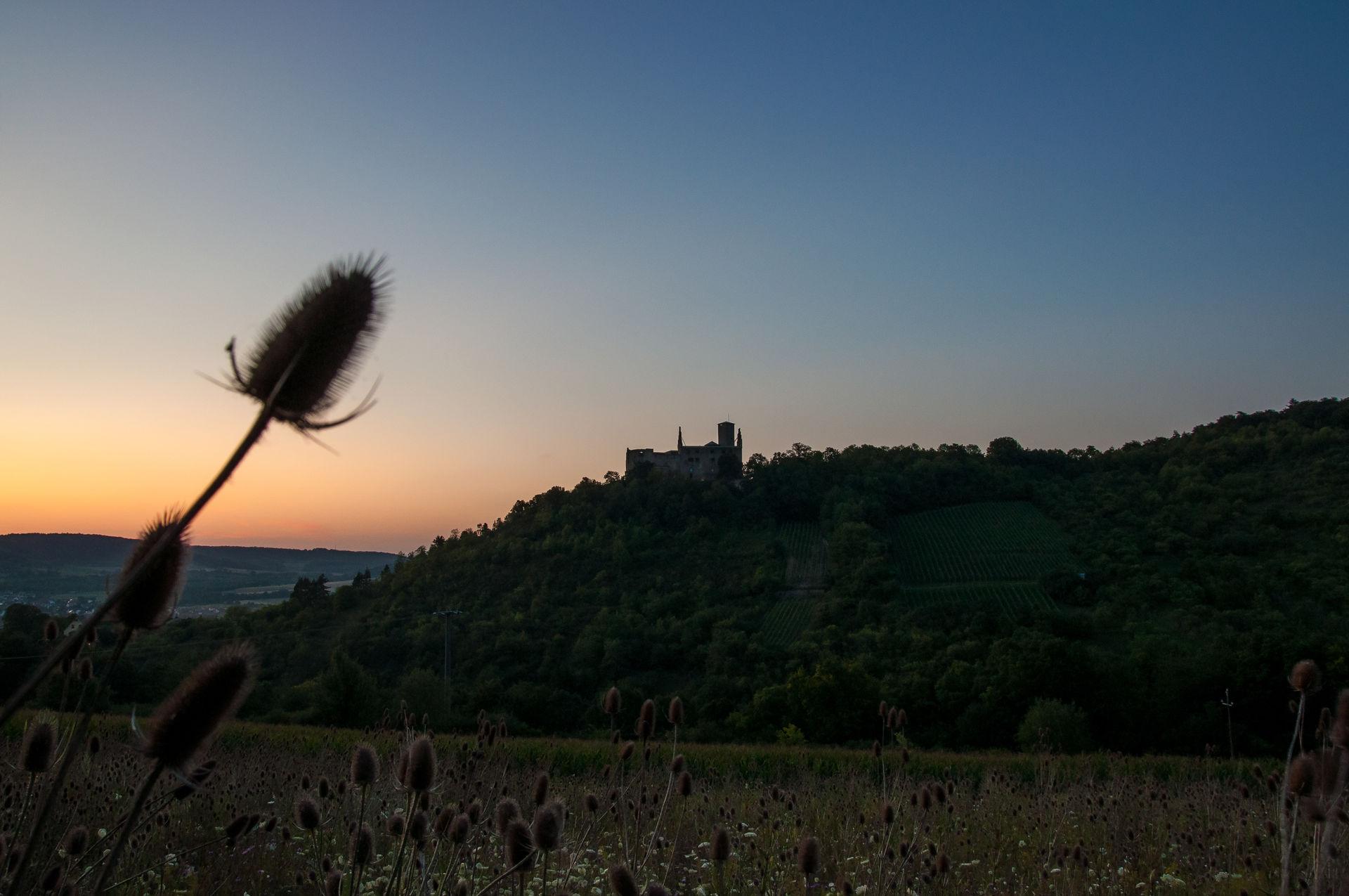 Foto von der Ruine Trimburg bei Sonnenuntergang